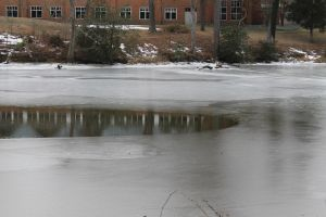 Transitioning from Water to Ice by Grangerbookworm