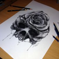 Skulls refined sketch by AtomiccircuS