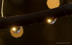 Let the sun shine by photojrs