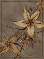 Sepia Stars Params by FractalEyes