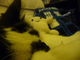 Gallifrey is sleeping by yeles