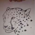 Cheetah Head Painting ~Quick Sketch+Painting~ by Vexalion12