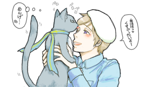 Hetalia Sweden cat and Moimoi by Chitanchitan