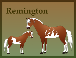 Remington- Reference Sheet by Jay-Ruth