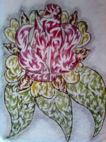 Stylises Rose with tribal paterns by My-Freedom-In-Art