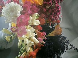 More and More Flowers by pattsy