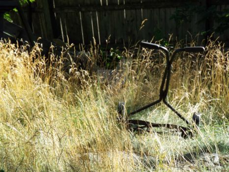 More to Mow by endomentalArtistry