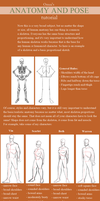 Anatomy and Pose Tutorial by Omnisciency
