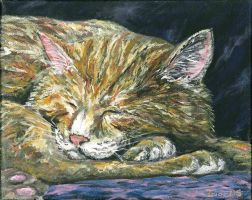Sleeping ginger by acrylicwildlife