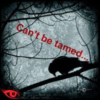 can't be tamed by faither1382