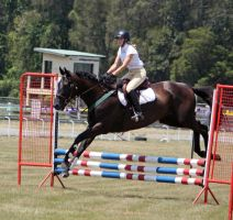 STOCK Showjumping 364 by aussiegal7