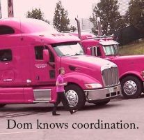 Dom Knows Coordination. by cydoniaknight14