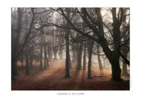 Conna's Autumn by lornamacdonald
