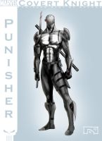 Punisher 21st by MisterAozame