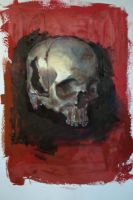 skull paint study by Aberzheim