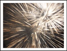 ...:Fireworks:... by Nailo