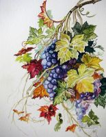 Grapes on the Vine by HouseofChabrier