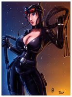 Catwoman By Bfetish Coledit Copy by innocenttazzlet