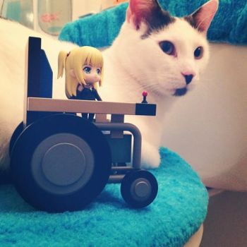 Mini Me and Kitty by Misa-on-Wheels