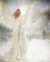 Winter Angel 2013 by imthinkingoutloud