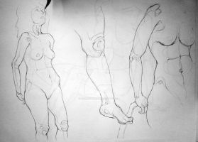 life drawing III by reminisense
