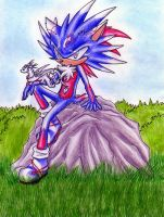 Marvel the Hedgehog by Shadow-of-Destiny