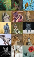 Wildlife speedpaints by Kiriska
