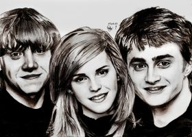 The Harry Potter Trio by Williaaaaaam