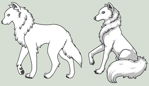 .: Wolf Templates :. by Angel-Of-Mist