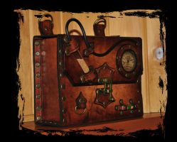 leather case steampunk by Lagueuse