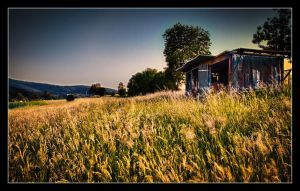 The old shed by JimP4nsen