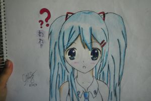 My Own Version of Hatsune Miku by IceScream99