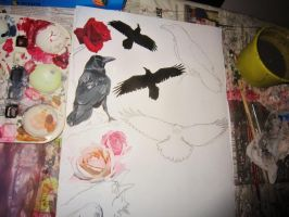 Ravens And Roses in process by Rockin-everyday