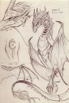 Dragon Sketch page CM 2 by Lyouie