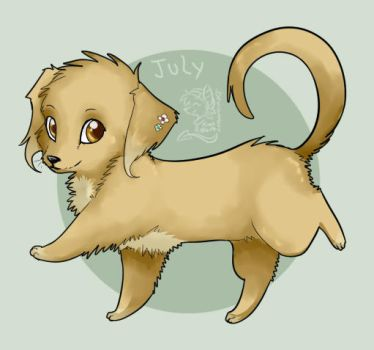 dachshund + lhasa apso by mr-tiaa