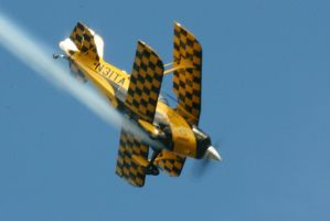 Diving Pitts Special by Kippenwolf