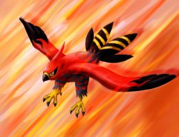 Talonflame by beowolfkiller2