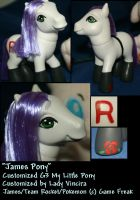 """Commish - """"James"""" Montage by LadyVincira"""