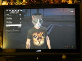 GTA Online Cat Masks and Shirt by Champineography