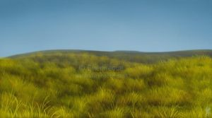 Grassy Hill by chenneoue