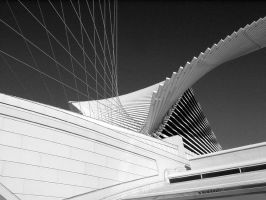 Milwaukee Art Museum 4 by TomWilcox
