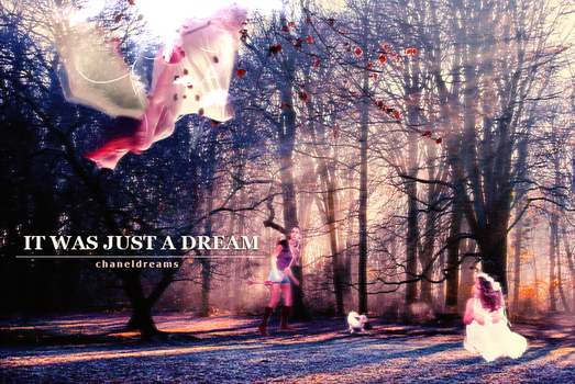 It was just a dream by chaneldreams