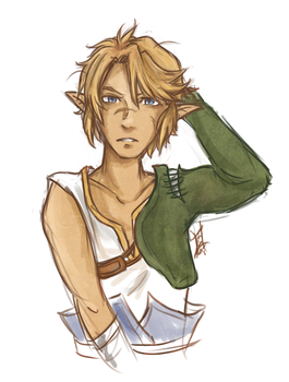 Link with scars by Hylian-Link