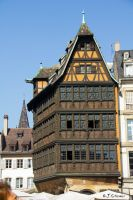 Kammerzell House by Sockrattes