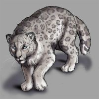 Arctic Leopard by Esava