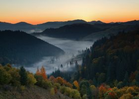 Fogs autumn by lica20