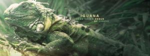 Iguana signature by ExExic