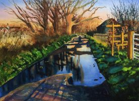 Puddles-watercolour-painting-by-ian-mckendrick by ianmckendrick