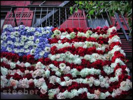 Flower Flag On Fire Escape by steeber