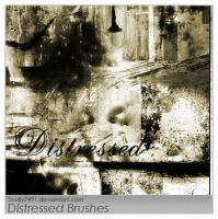 Distressed Brushes by Scully7491